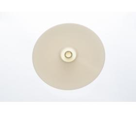 100954 Диск-выбрасыватель  для  R301  ROBOT-COUPE